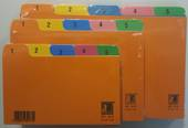 System Index Cards, Multi Coloured, Numbered 1-31, 6