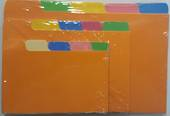 System Index Cards, Multi Coloured, Plain 5Tab, 8